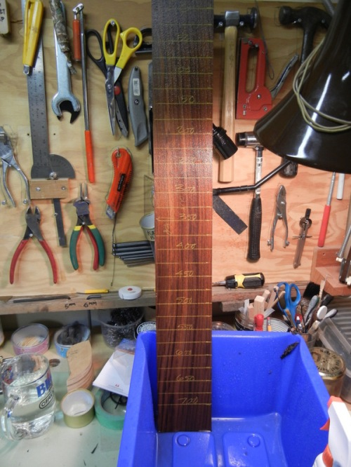 one rib trimmed and marked, and soaked down for bending
