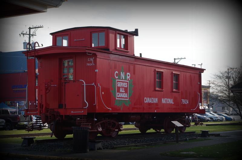 4-IMGP0312